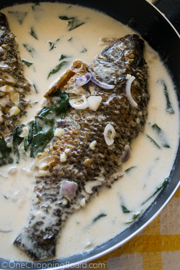 Fried Tilapia with Coconut Milk Sauce